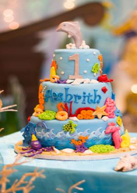 Birthday Photoshoot Services in Panchkula, Haryana- A2Z Snappers